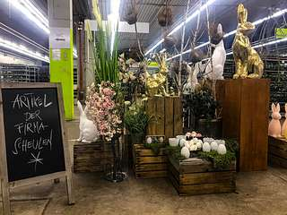 Blumengrossmarkt Düsseldorf – inside:market – Osterausstellung