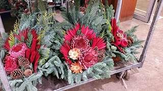 Advent-Sonderverkauf auf dem Blumengrossmarkt Düsseldorf