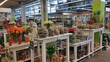 trendfleur – Blumengrossmarkt Düsseldorf