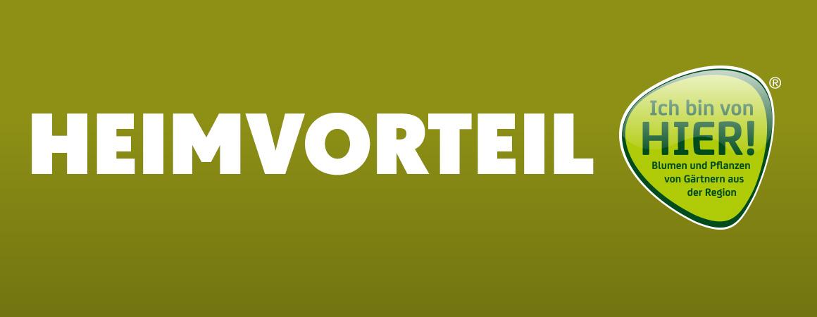 Blumengroßmarkt Düsseldorf – Regional gewinnt
