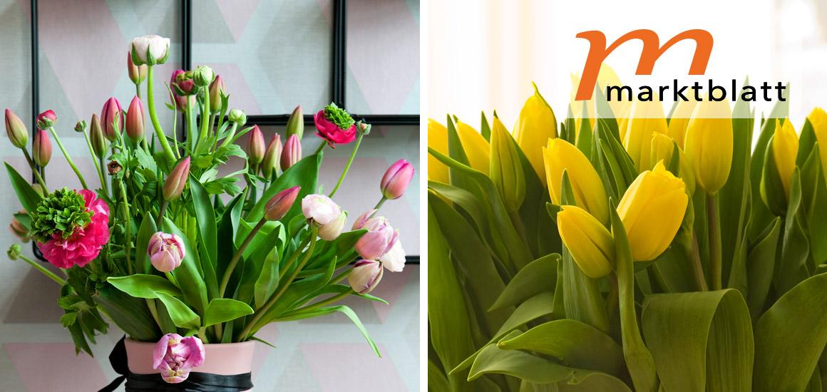 Blumengroßmarkt Düsseldorf – Die Macht der Farben