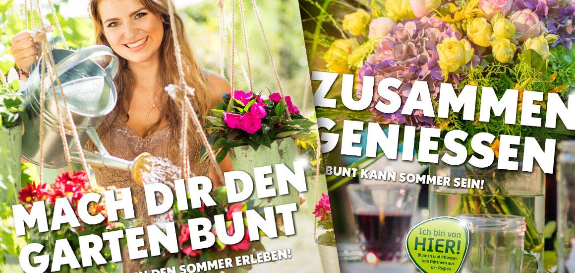 Blumengroßmarkt Düsseldorf – Sommer zum mitnehmen